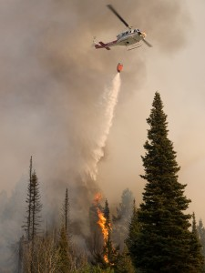 The Springs Fire, Banks-Garden Valley, Idaho, Boise National Forest, August, 2012. Photo by Kari Greer.