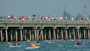 The 2014 Long Bridge Swim. Photo courtesy Keokee.