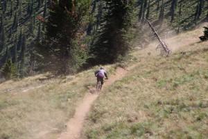 A mountain biker rallies down the trail at Schweitzer. Photo by Ben Olson.