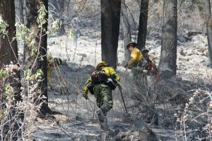 A crew of hotshots from Montana mop up at Cape Horn Fire in July. Photo by Ben Olson.