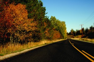 Dufort Road is a great scenic drive to check out fall colors. Photo by Ben Olson.