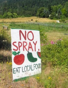 "A handmade ""NO SPRAY"" sign outside an organic farm."