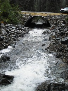The new 25-foot width by 13-foot tall Quartz Creek Arch culvert taken in 2014.  Photo by Kevin Davis.