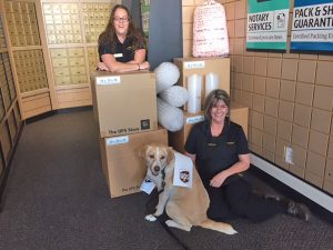 Drake, center, pals around with Jaime Meichtry, left, and Mindy Berry, right, at the UPS Store in Sandpoint.