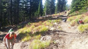 Trail volunteers work on the Watershed Crest Trail. Photo by John Monks.