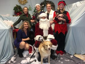 The Pooch Parlor team: Top (left to right): Kem Tonseth, Crystal McLeish, Julia Baillod, Julia Baillod. Bottom: DuAnn Chambers, Santa Claus and Drake.