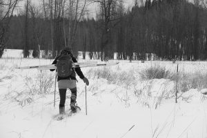 Cadie Archer snowshoes at the National Kootenai Wildlife Refuge outside Bonners Ferry last week. Photo by Ben Olson.
