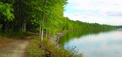 The Pend d'Oreille Bay Trail stretches for 1.5 miles along the shorelines of Lake Pend Oreille
