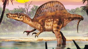 The spinosaurus, cruising for a meal. Courtesy image.